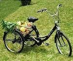 ZNL FANO-TEC Dreirad Für Erwachsene