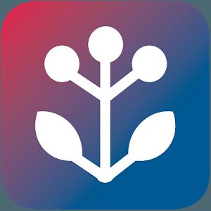 besten Apps für Senioren - bewährte Hausmittel