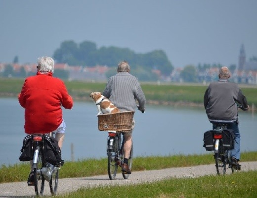 Seniorenrad Radfahren im Alter